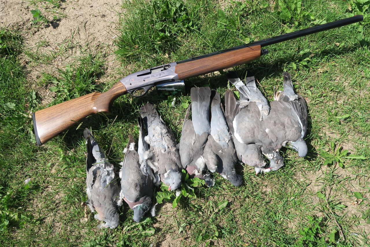 Fabarm bøsse med syv nedlagte duer
